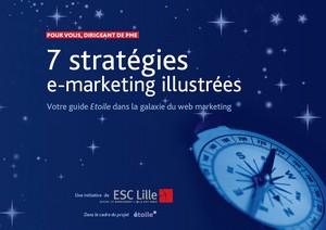 livre 7 stratégies marketing pour les PME