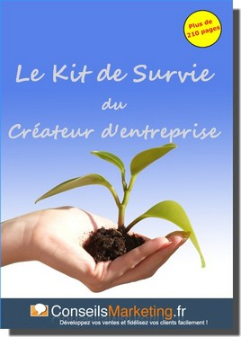 Le kit de survie marketing du createur d'entreprise