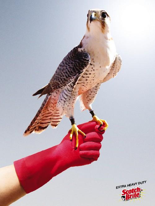 pub gants spontex