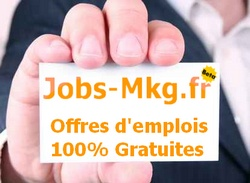 emploi marketing