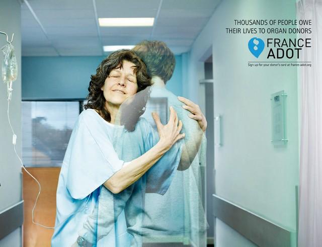 don organe